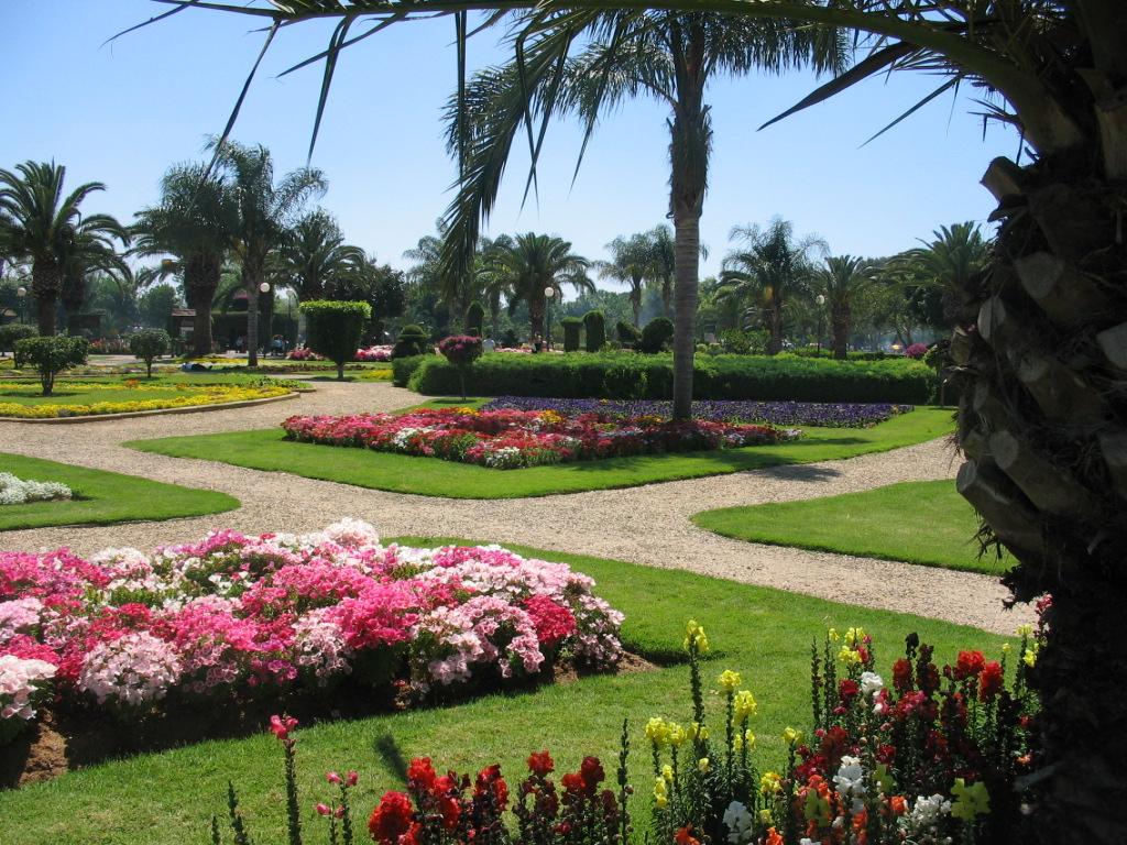 פריחה בעיצומה בפארק לאומי רמת גן באביב - לא צריך לחפש בחול